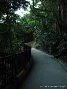 Peak Path