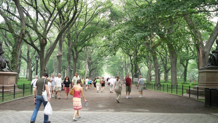 Walk through central park to get in extra steps