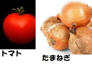 材料、トマトたまねぎ
