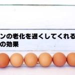 パンの老化を防ぐ卵の効果