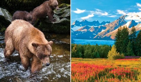 The natural wonders of Southeast Alaska.