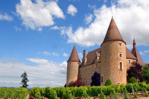 Wineries abound in Provence region of France