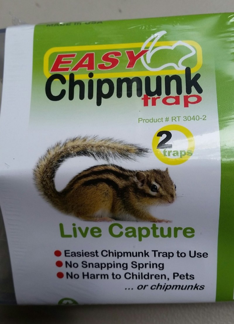 Large Of Getting Rid Of Chipmunks