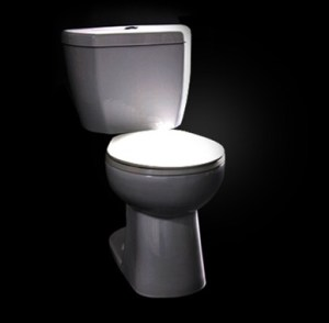 The Stealth Toilet. You'll never see it coming. Image from Niagara Corp.