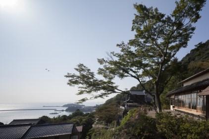 © H.UEDA 上田宏撮影