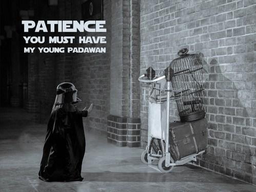 Medium Of Patience Young Padawan