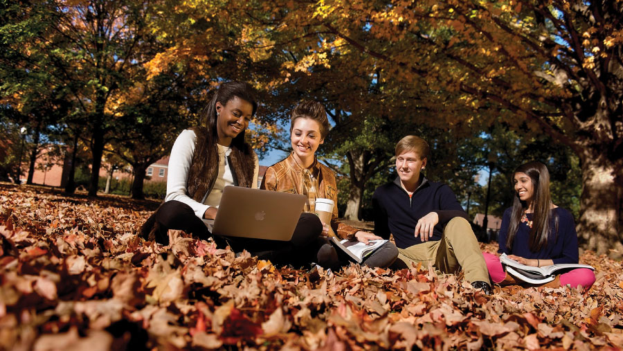 Students sitting in leaves