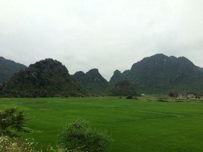 Voilà le paysage que nous découvrons en arrivant au parc national!
