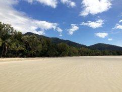 Là où la forêt tropicale rencontre l'océan...