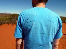 Les mouches de l'outback!