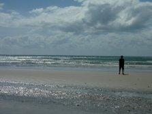Une des nombreuses plages du Daintree National Park