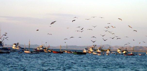 Mancora vit de la pêche et du tourisme