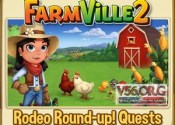 Rodeo Round-up! Guide