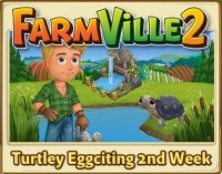 Turtley Eggciting 2nd Week