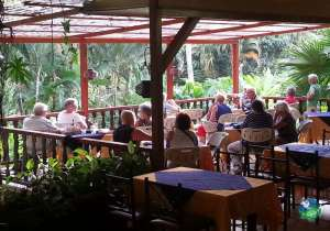 Ara Ambigua Lodge Restaurant