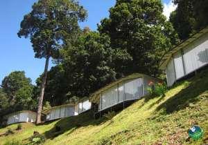 Dantica Cloud Forest Lodge Exterior