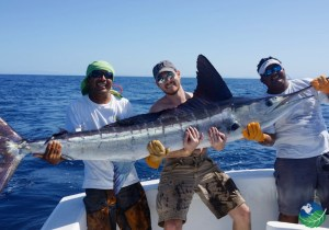 Yellowfin Sportfishing Swordfish