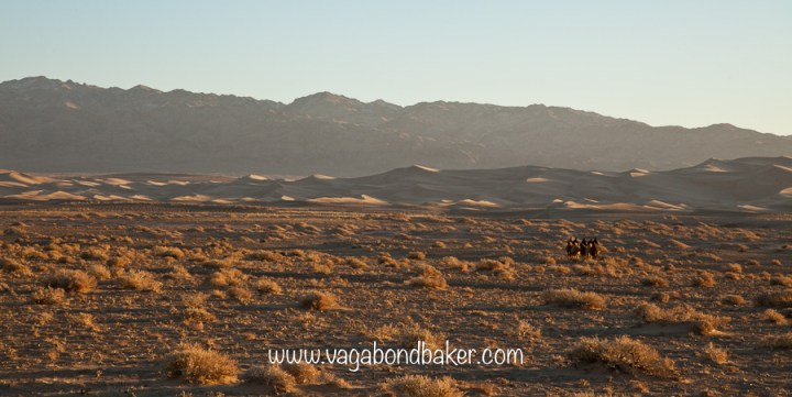 Solitude, the camels in the distance.
