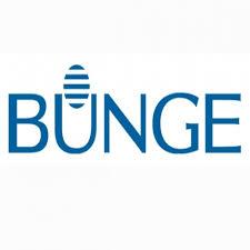 Bungue Programa Jovens Talentos – Trainee 2016