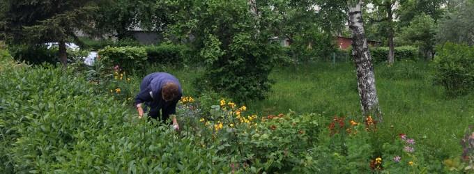 Iubiti florile Manastur Cluj