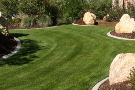 lawn landscape slice