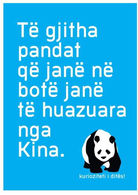 kurizoiteti-panda