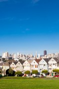 140318_PaintedLadies_8374