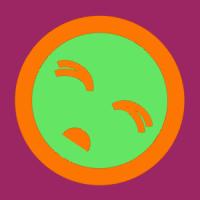 Raptors7