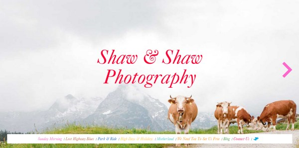 Shaw & Shaw Photography