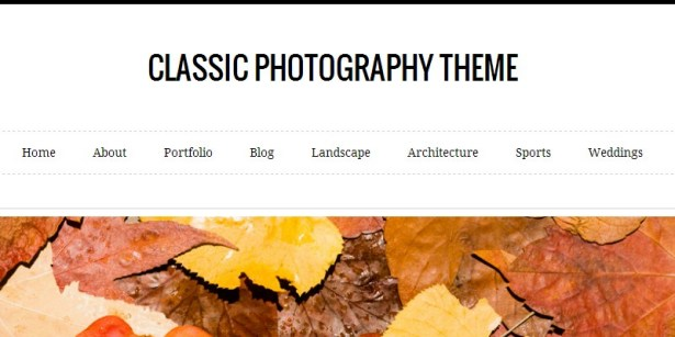 Documentation for Classic WordPress Photography Theme