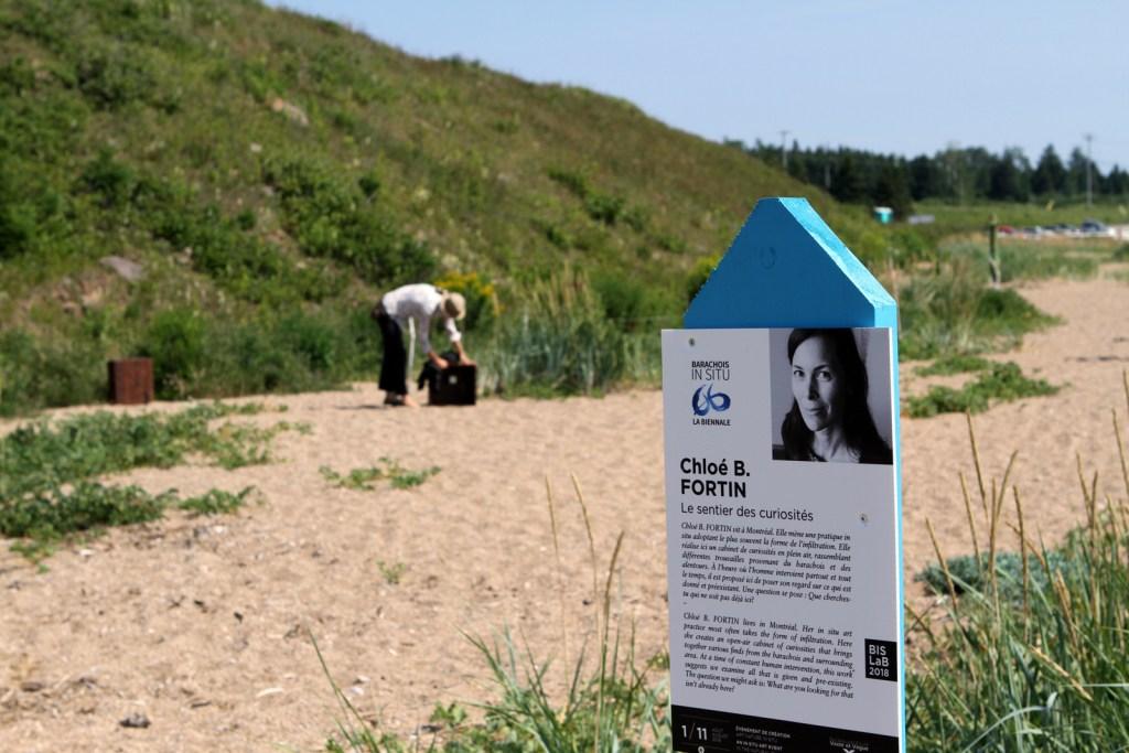 Chloé B. FORTIN | LE SENTIER DES CURIOSITÉS | BISLaB 2018 IMG_0099
