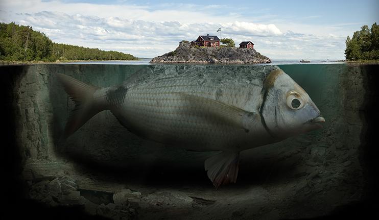 utstallning_imagine_fishy_island