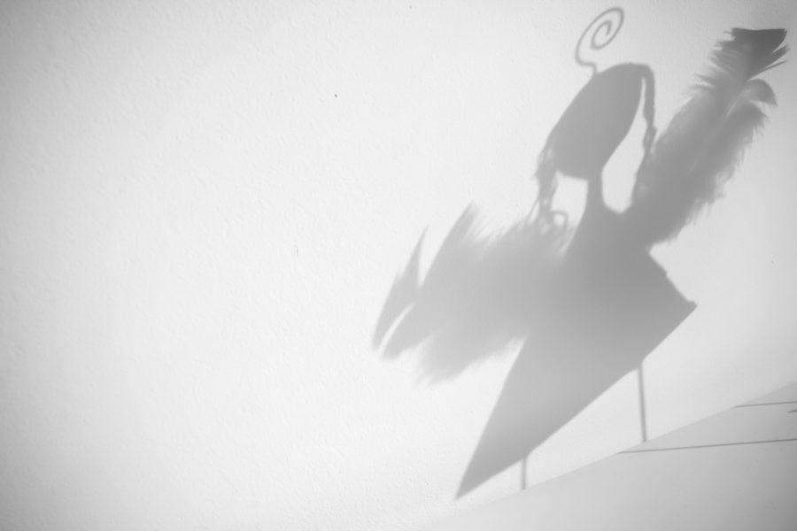 angel shadow