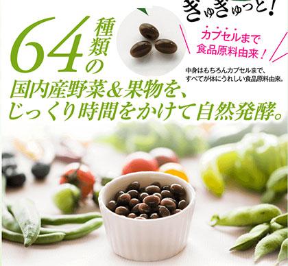 国内産野菜と果物64種類をじっくり自然発酵