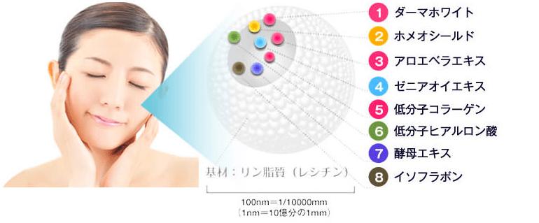 jokin-air.com4