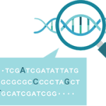 癌(がん)などの病気や体質の遺伝子検査キット+MYCODE「マイコード」