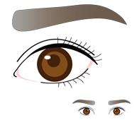 ハナレ太眉タイプ / 個性的で幼い顔に