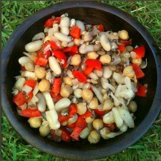 סלט שעועית קר - סלט שעועית עם עדשים חומוס פלפל אדום ובצל - השוחטת הטבעונית מתכונים טבעוניים