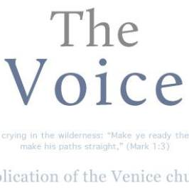The Voice 2.1: January 01, 2012