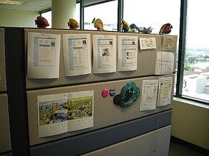 document cubicle
