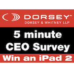 Dorsey & Whitney Survey