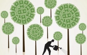 money-tree-growing
