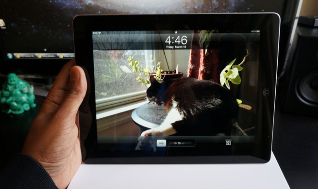 new-ipad-kitty-hot