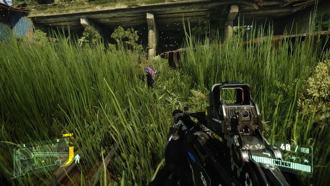 Crysis 3: Stalkers