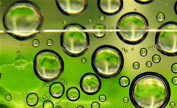 biofuels investing