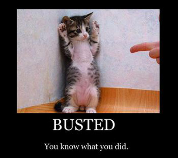 busted