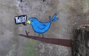 tweet bird twitter