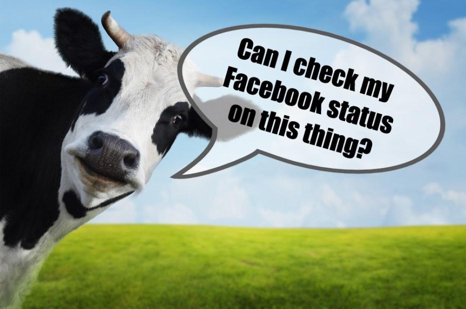 Nope, sorry Bessie.