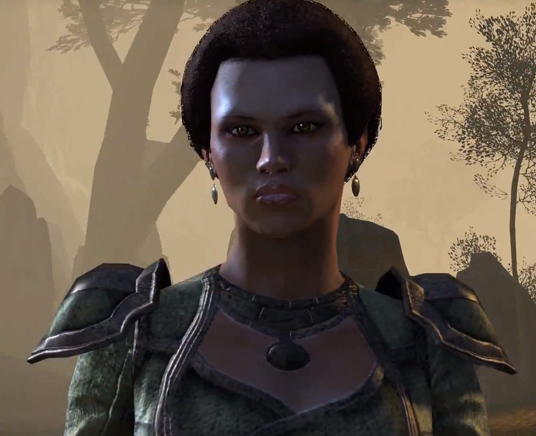 The Elder Scrolls Online's character shots