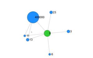 Predictive analytics examines relationships between people.